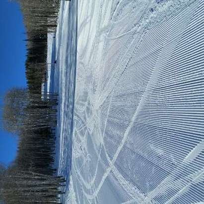 Bluebird day and surprisingly not busy. Nicely groomed runs.