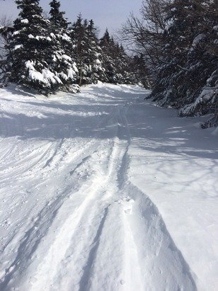 All day Friday this is what I skied thru, fantastic conditions!