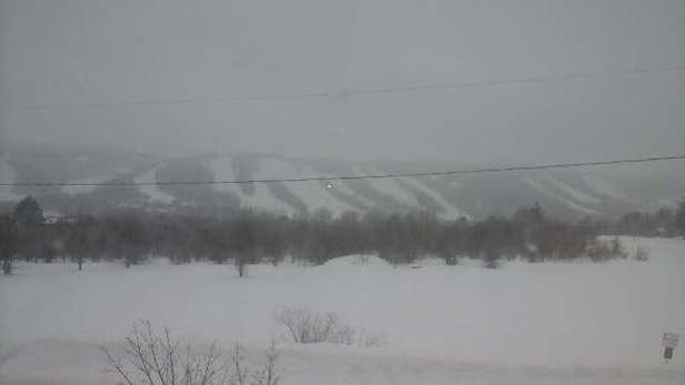 has been snowing for past 3 days straight. conditions are great. lots of powder still in glades. blacks are not icy today.
