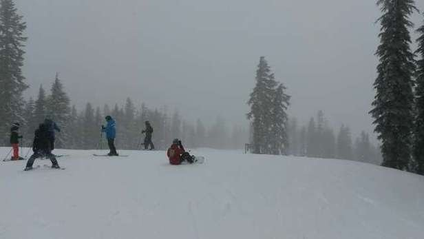 Medium visibility, but the best snow we've had up here all year. lovin it!!!