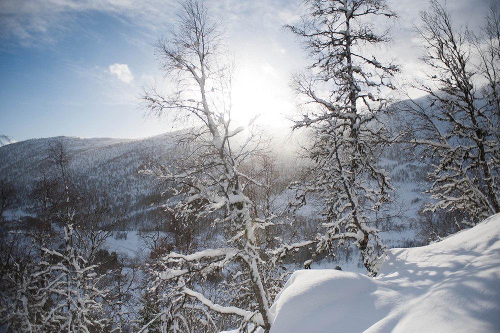 Utsikten var fin på vei opp fjellet. - ©Eirik Aspaas