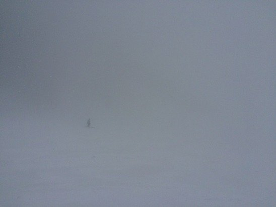 Low visibility, great powder (6