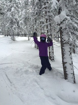 Best day, POW POW, and no lines, PERFECT