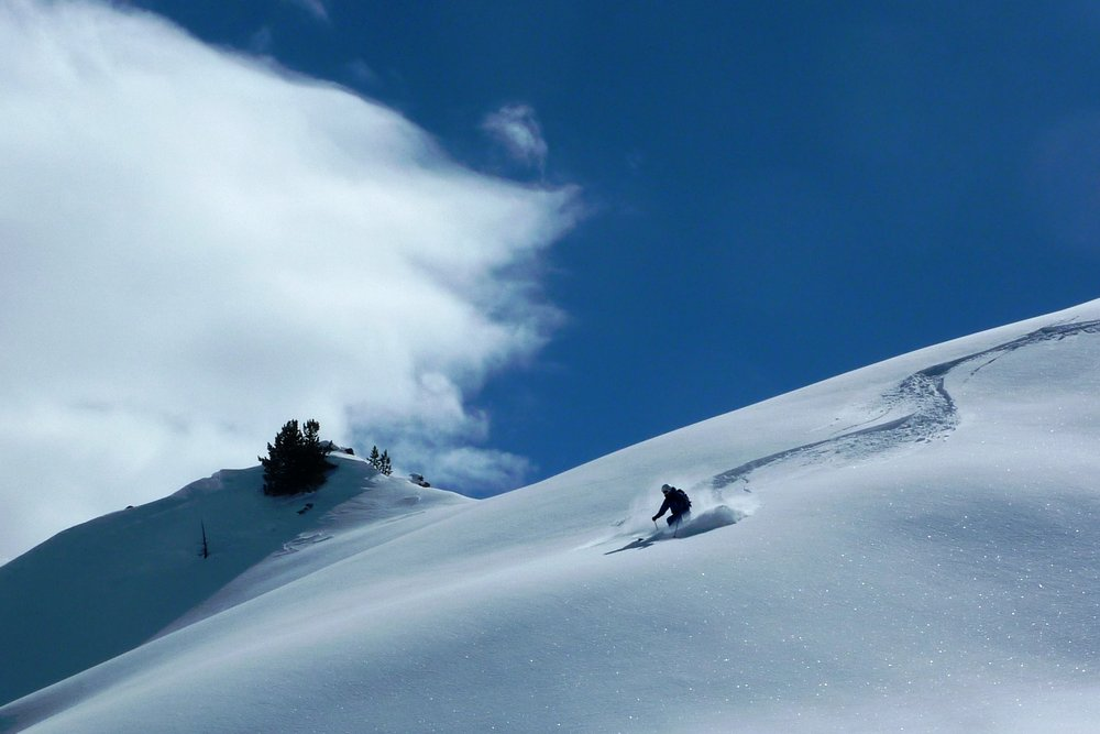 Powder March 2010 | Jon West - ©Domenic Cowdell | dom2ski @ Skiinfo Lounge