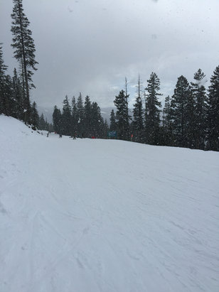 Angel Fire Resort - Got snowed on this afternoon!!! Final day tomorrow, come on!! - ©Greg
