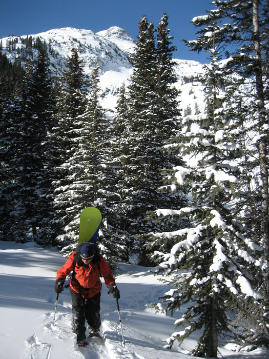 A snowboarder snowhoeing up the slopes of Durango, CO.