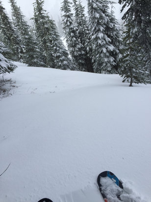 Mt. Hood Meadows - Last week had some good days, I'm heading up Sunday, should be a decent fresh snow day. If you come here just make sure you bring a rain poncho and hot weather wax.