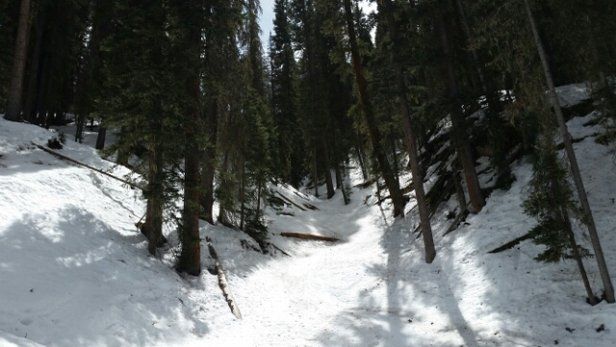 Durango Mountain Resort - watch where you're going in McCormack s  - ©ricky.emerson.60