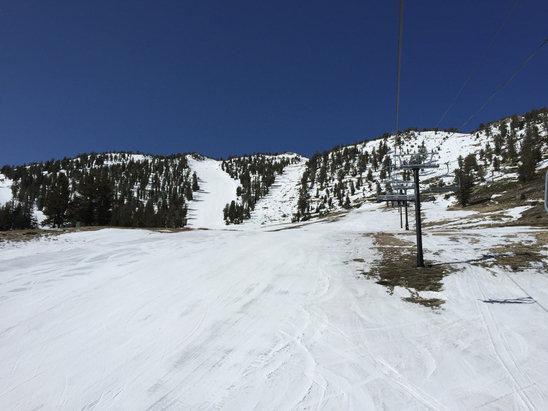 Mt. Rose - Ski Tahoe - Backside - ©Bill's iPhone