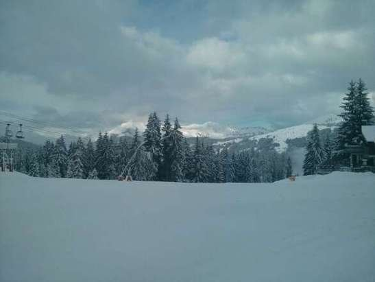 Les Gets - wet powder ,lots of new snow, now machine groomed. - ©Chalet Uxello