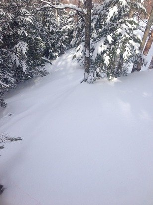 Jay Peak - is this feb pow in april. last pow day for year   - ©Anonymous