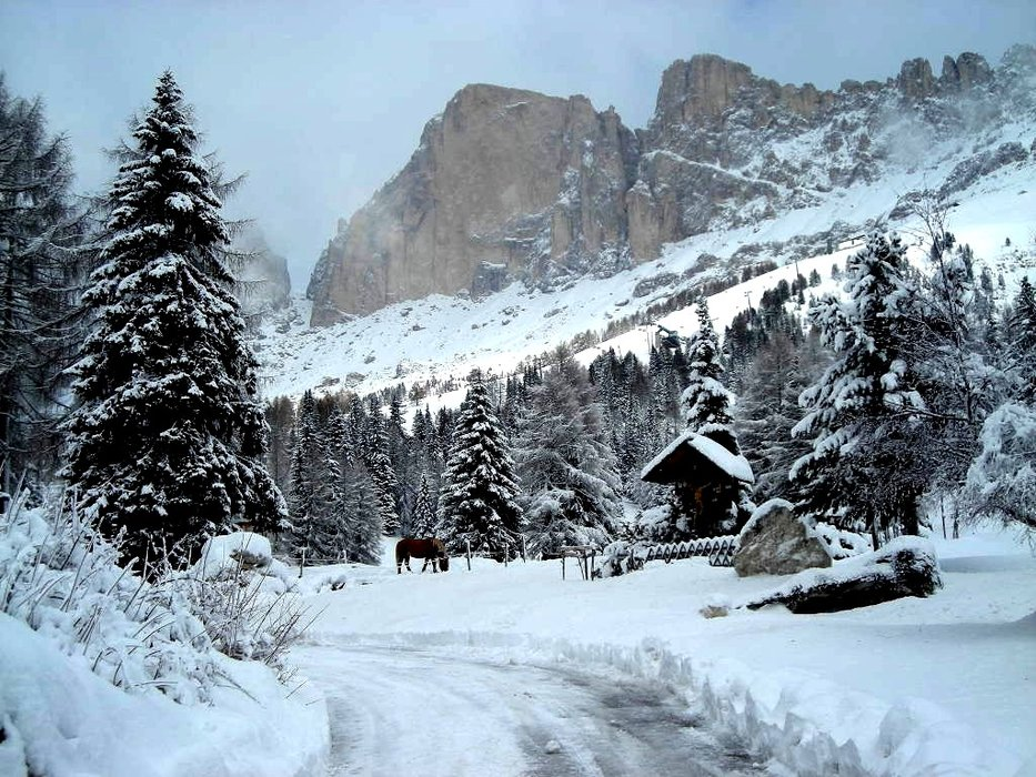 Carezza - Passo di Costalunga - ©stratos @ Skiinfo Lounge