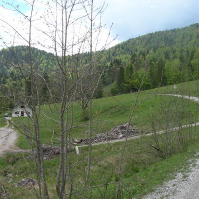 Galgenwurfsattel - Schronbachtal #19