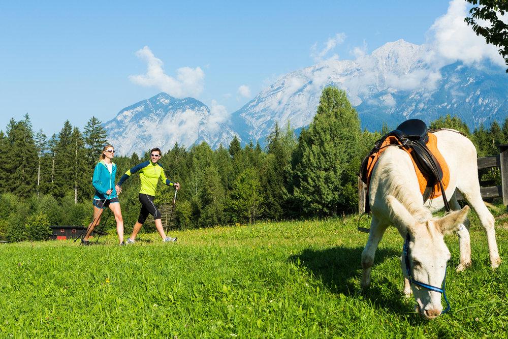 Nordick Walking in Innsbruck und Umgebung - ©Innsbruck Tourismus