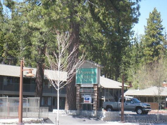 Pepper Tree Inn