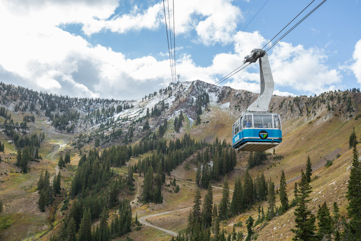The good stuff is falling up high at Snowbird. - ©Matt Crawley