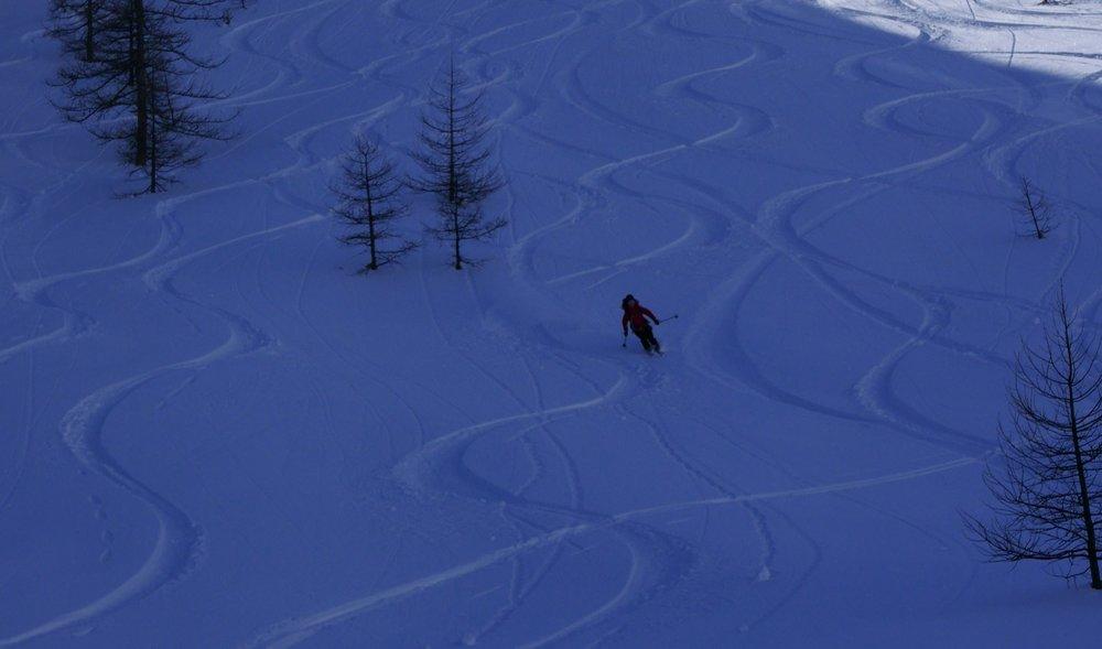 På dag to kjører vi ned til 1600 moh og krysser da tregrensen. - ©Mattias Erlandson