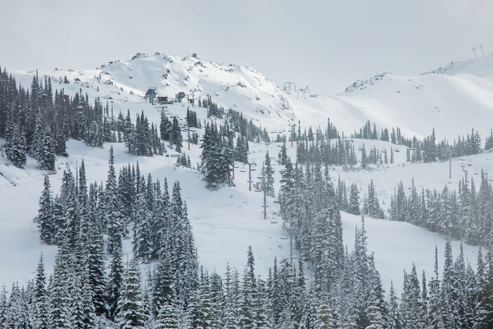 In Whistler Blackcomb hat es ordentlich geschneit - ©Mitch Winton / Coast Mountain Photography