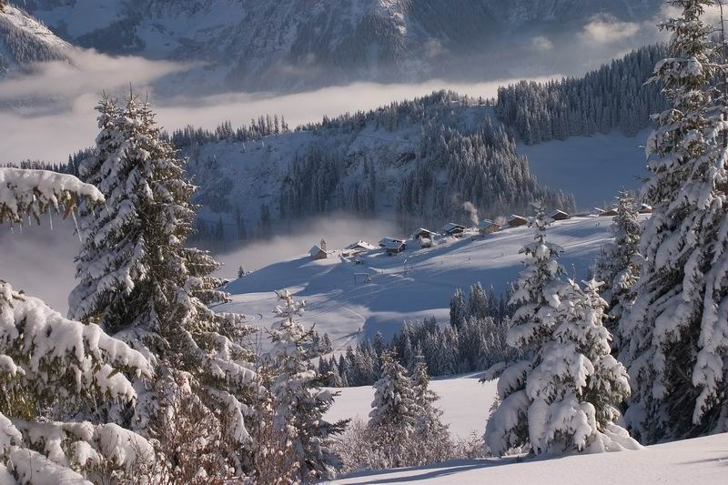 Scenic view of Morgins - Champoussin, Switzerland