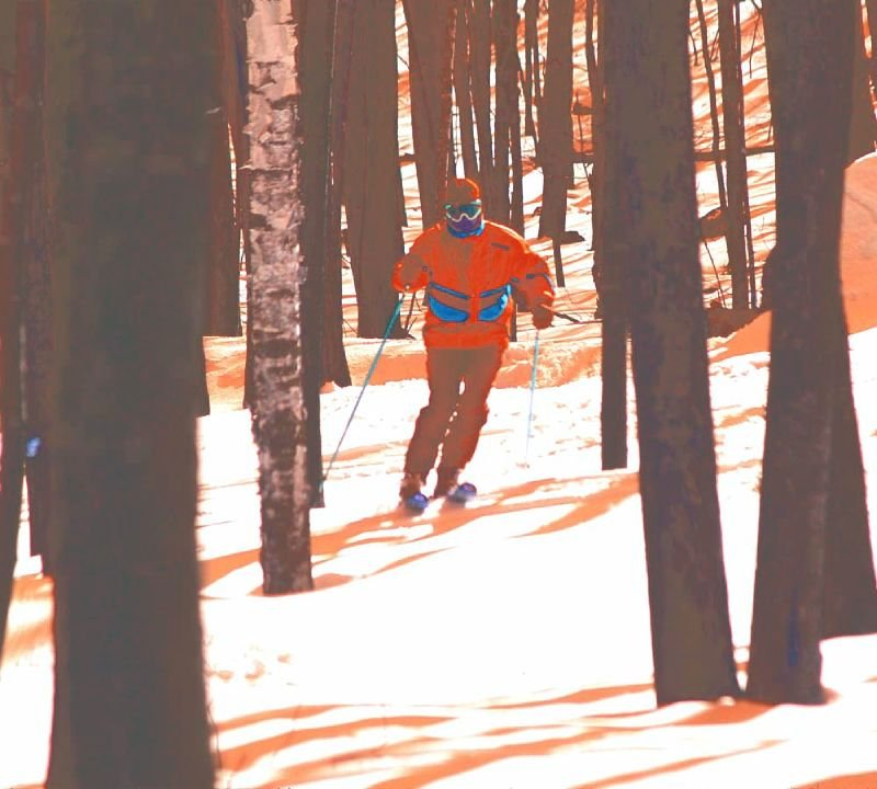 A skier carving through the trees in Granite Peak, Wisconsin