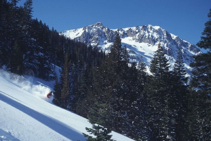Powder skier in Mammoth Mountain