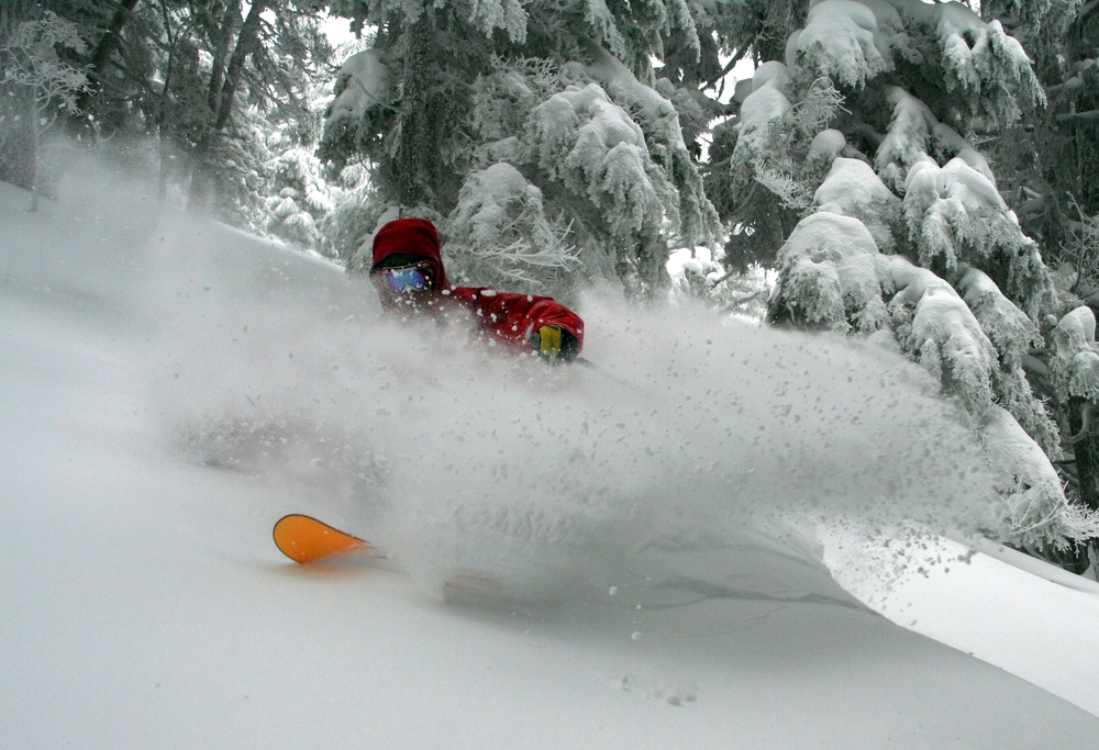 A skier plunges into powder at Mt. Bachelor. Photo courtesy of Mt. Bachelor Ski Resort.
