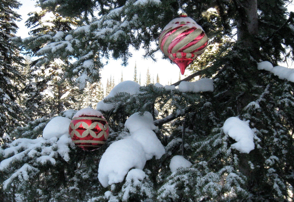 Ornaments decorate trees at Sun Peaks. Photo by Becky Lomax.