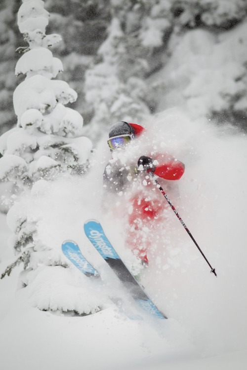It wasn't hard to find powder yesterday at Vail