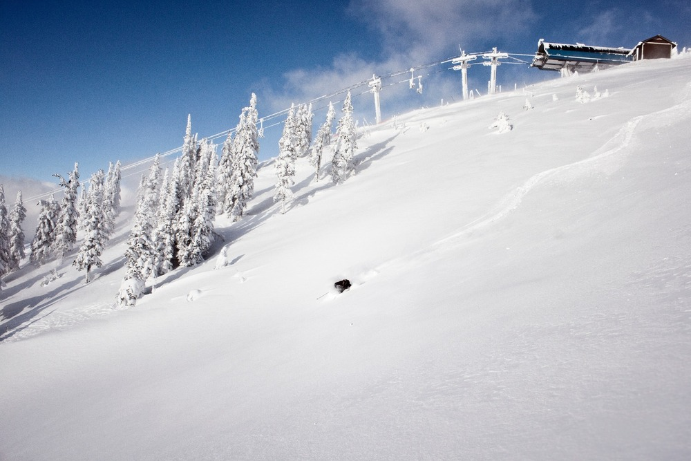 Powder in Revelstoke - ©Revelstoke Mountain Resort