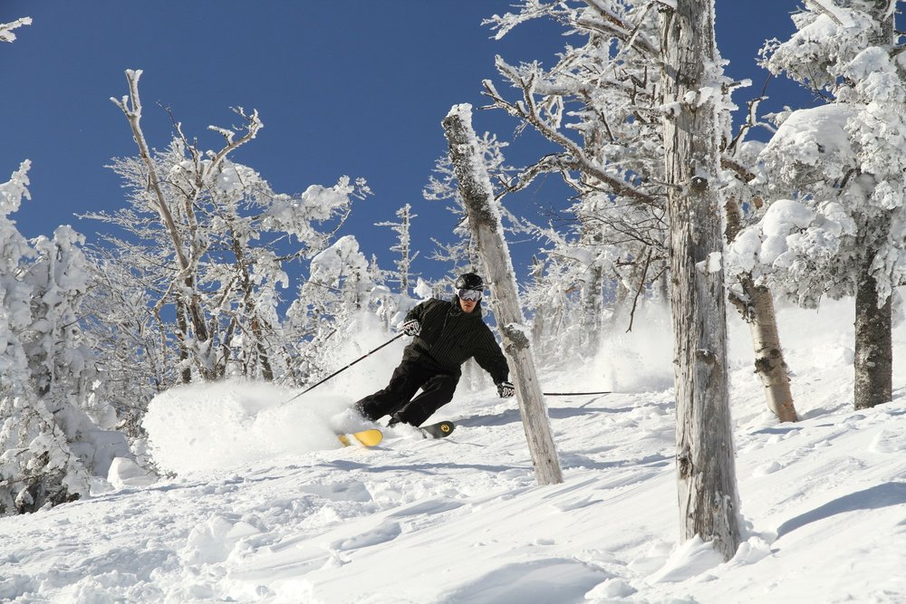 One look at the glade skiing at Whiteface and you'll wonder what took you so long to start. Photo Courtesy of ORDA/Dave Schmidt.