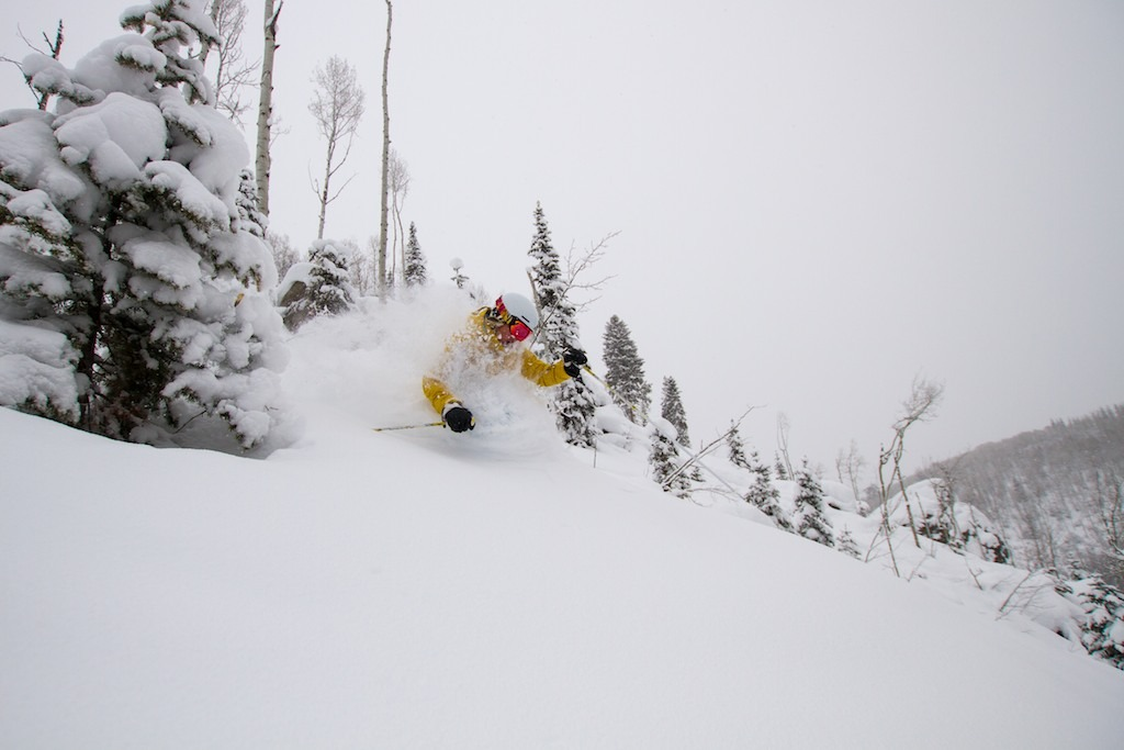 Fresh Steamboat powder for Caroline Lalive. - ©Liam Doran