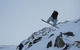 Snowboarder catching air at Glencoe (Glencoe Mountain Ltd)