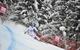 World Cup Wengen 2013 - ©Vianney THIBAUT/AGENCE ZOOM