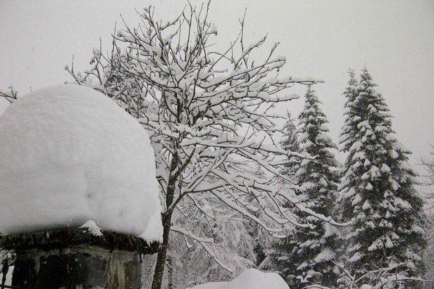San Martino di Castrozza - Neve fresca 17 Gen 2014
