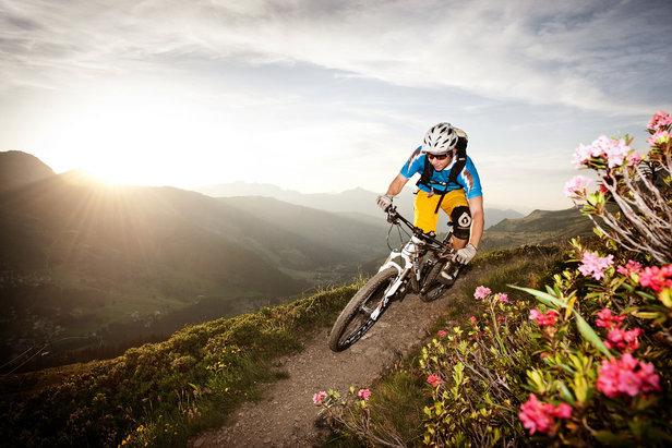 Bitte mitmachen: Umfrage zum Bike-Tourismus in den Alpen!