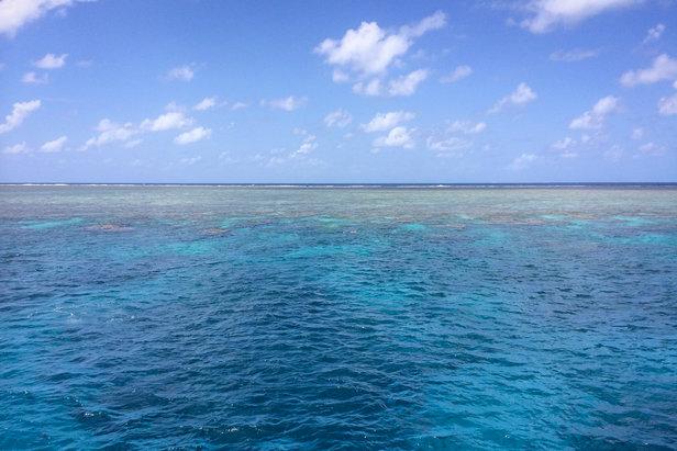 Der beste Ort zum Schnorcheln: Das Outer Reef - ©Julia Mohr | Florian Reuter
