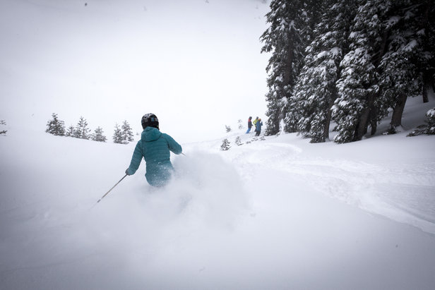 Floating in powder on Dec. 11 at Alpine Meadows. - ©Squaw Valley-Alpine Meadows