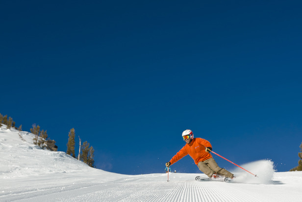 Groomers at Mount Rose