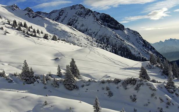 Ehrwalder Alm, Tyrol (Østerrike) - ©Stefan Drexl