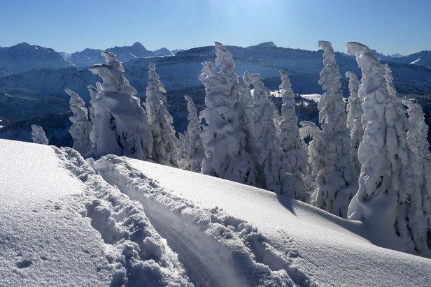 Trauriges Ende einer Skitour