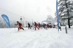 Training für Skitourengeher: Fit werden für die Tourensaison - ©Karl Posch