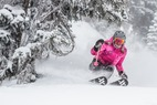 Powder Day at Snowbird, Utah: Storm Gallery