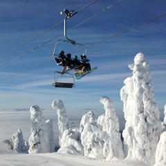 Snow ghosts at the summit of Whitefish Mountain Resort