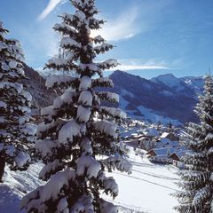 Chatel