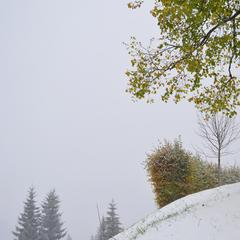 22. Oktober - Schneefall im Kleinwalserta - ©Kleinwalsertal Tourismus