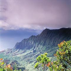 Kalalau Valley - ©Hawaii Tourism Authority (HTA) / Ron Dahlquist
