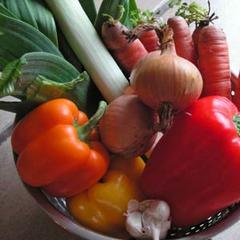 Gemüseschale - ©www.pixelio.de