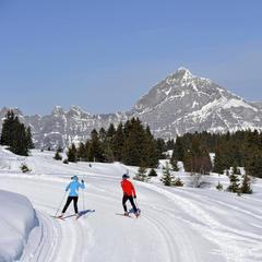 Les saisies pr sentation de les saisies la station le domaine skiable - Office de tourisme les saisies ...