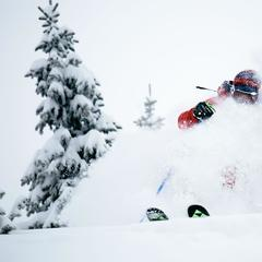 Deep powder Wolf Creek - ©Jason Lombard