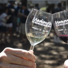Mammoth Festival wineglasses (Peatross_MMSA)